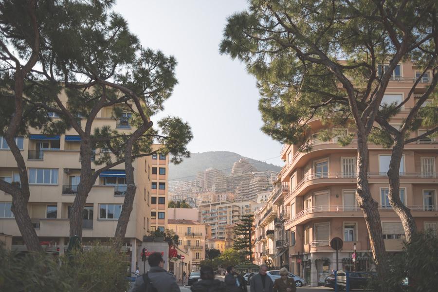 Route Napoléon_11